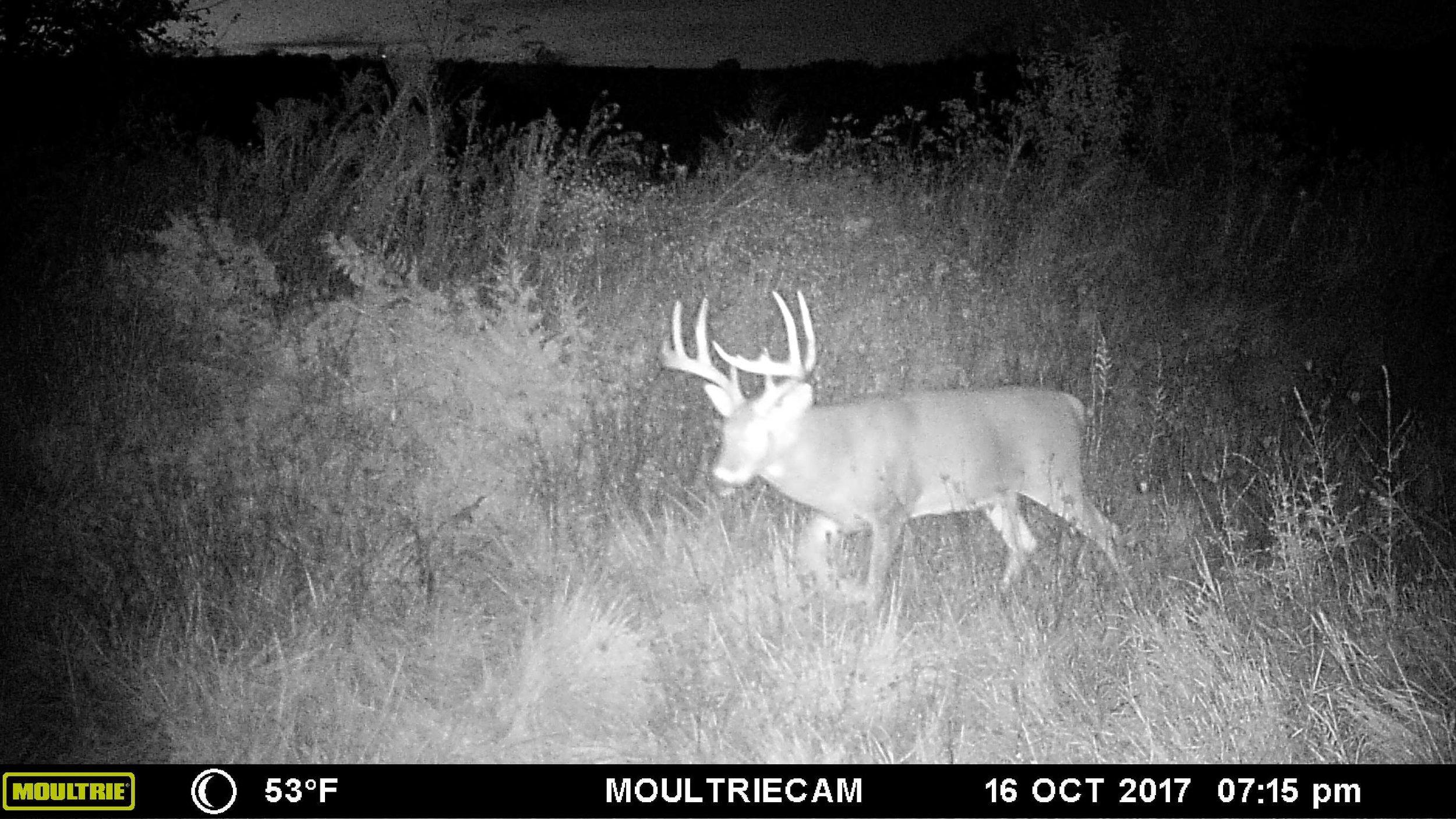 Missouri 2017-22.jpg