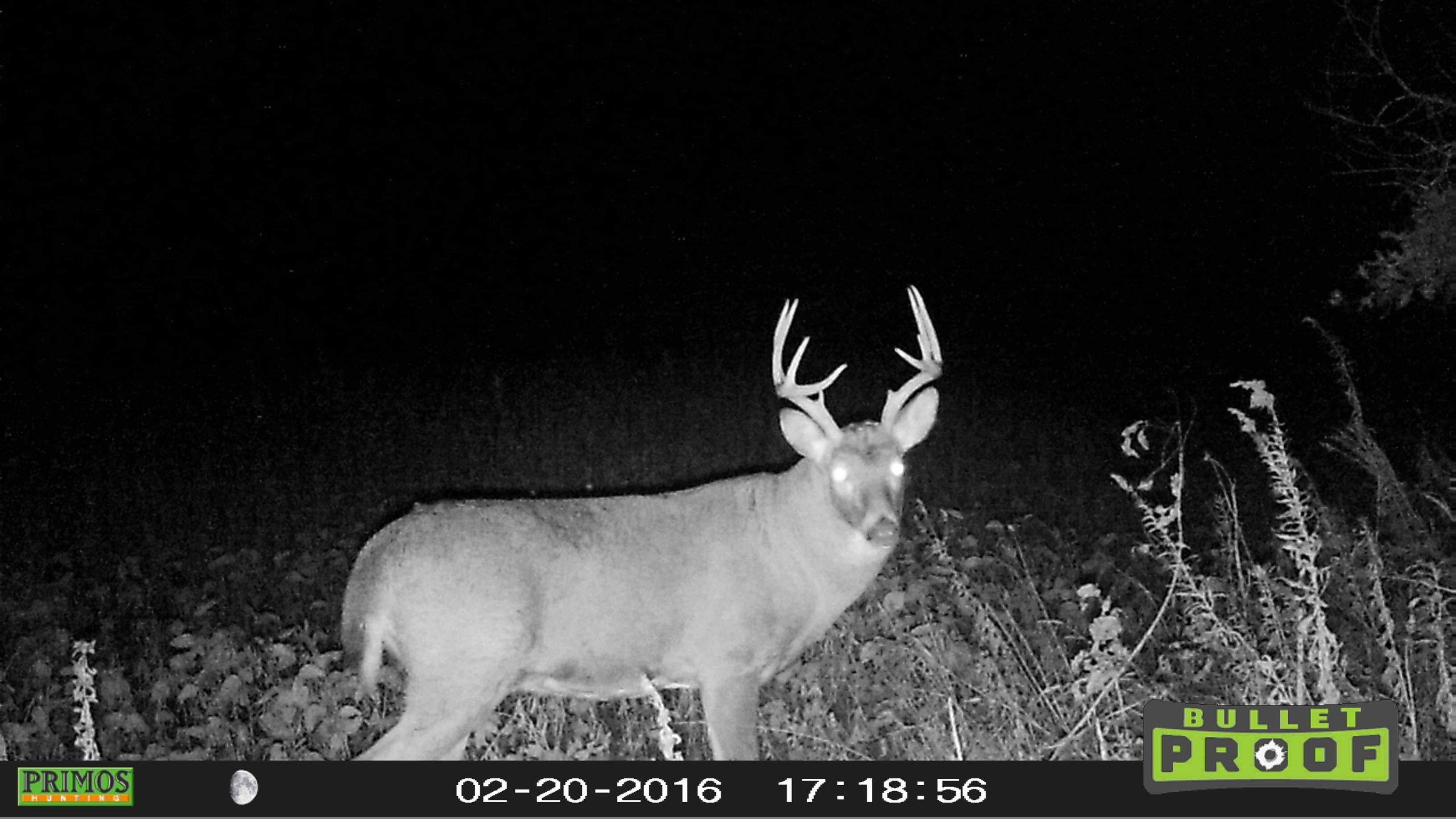 Missouri 2017-43.jpg