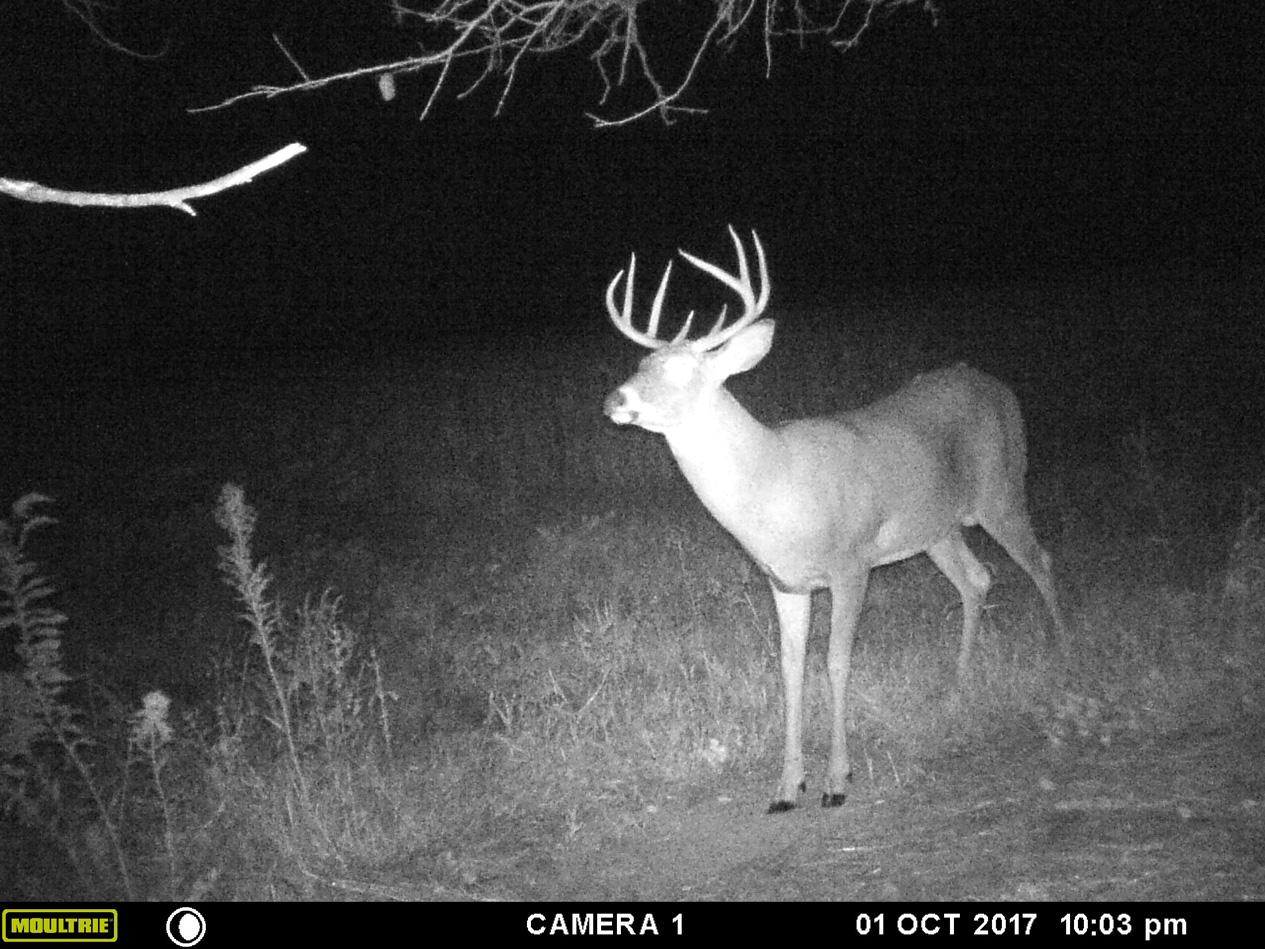 Missouri-2017-19.jpg