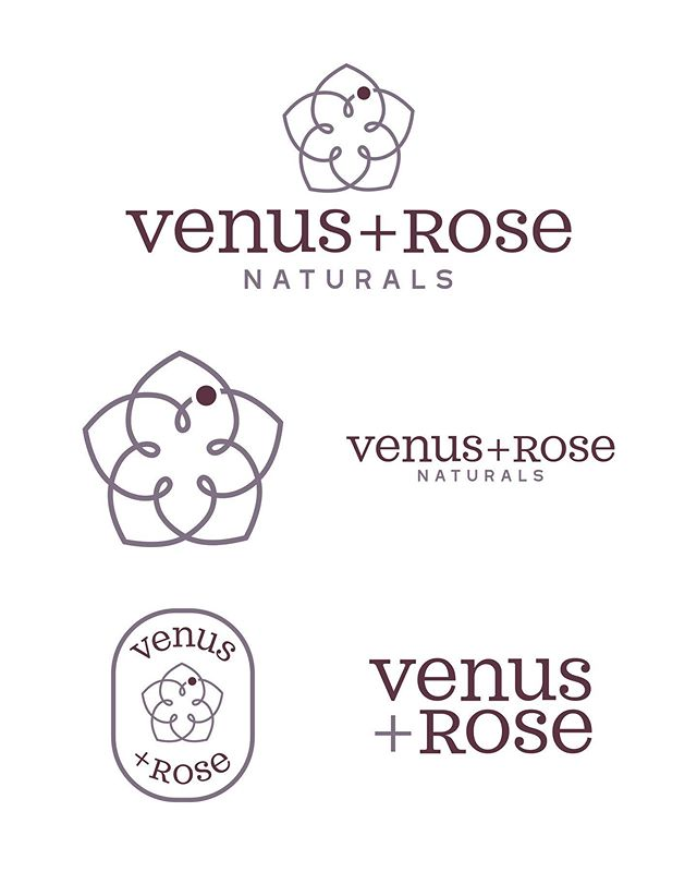 Clean little logo spread we did for our friends over at @venusandrose22 👌🏻 . . . . #fangandclawstudio #venusandrose #experiencehartsville #hartsvillesc #shoplocal #logodesigner #graphicdesign #procreateillustration #adobeillustrator #illustration #typographydesign #typography #badgelogo #cbd #essentialoils #naturalhealth