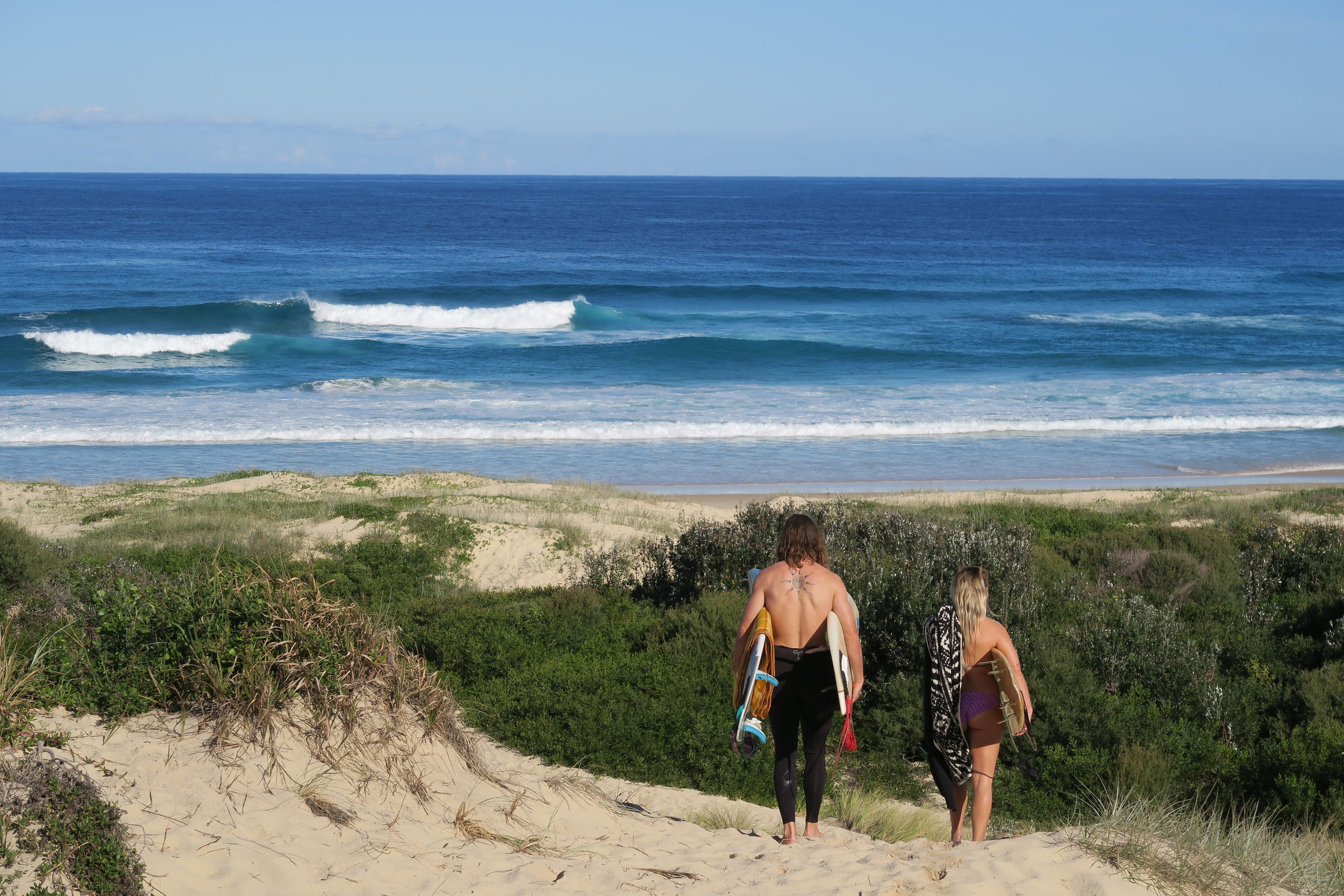 SURF QUEST | 2019 -