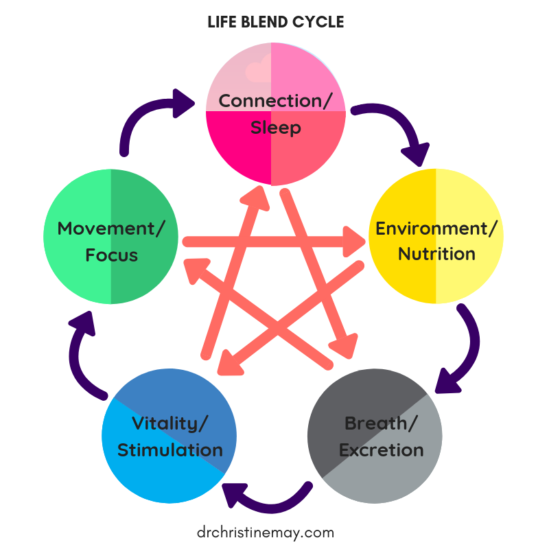 FaceWell integrative care lifeblend cycle