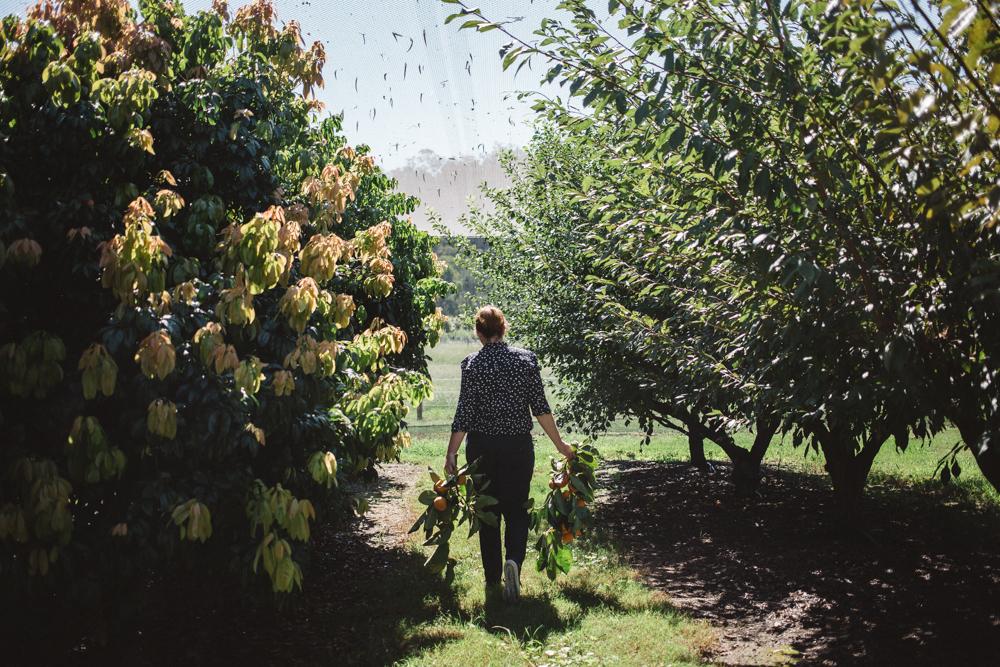SP Reiby Farm_by_Luisa Brimble-138.jpg