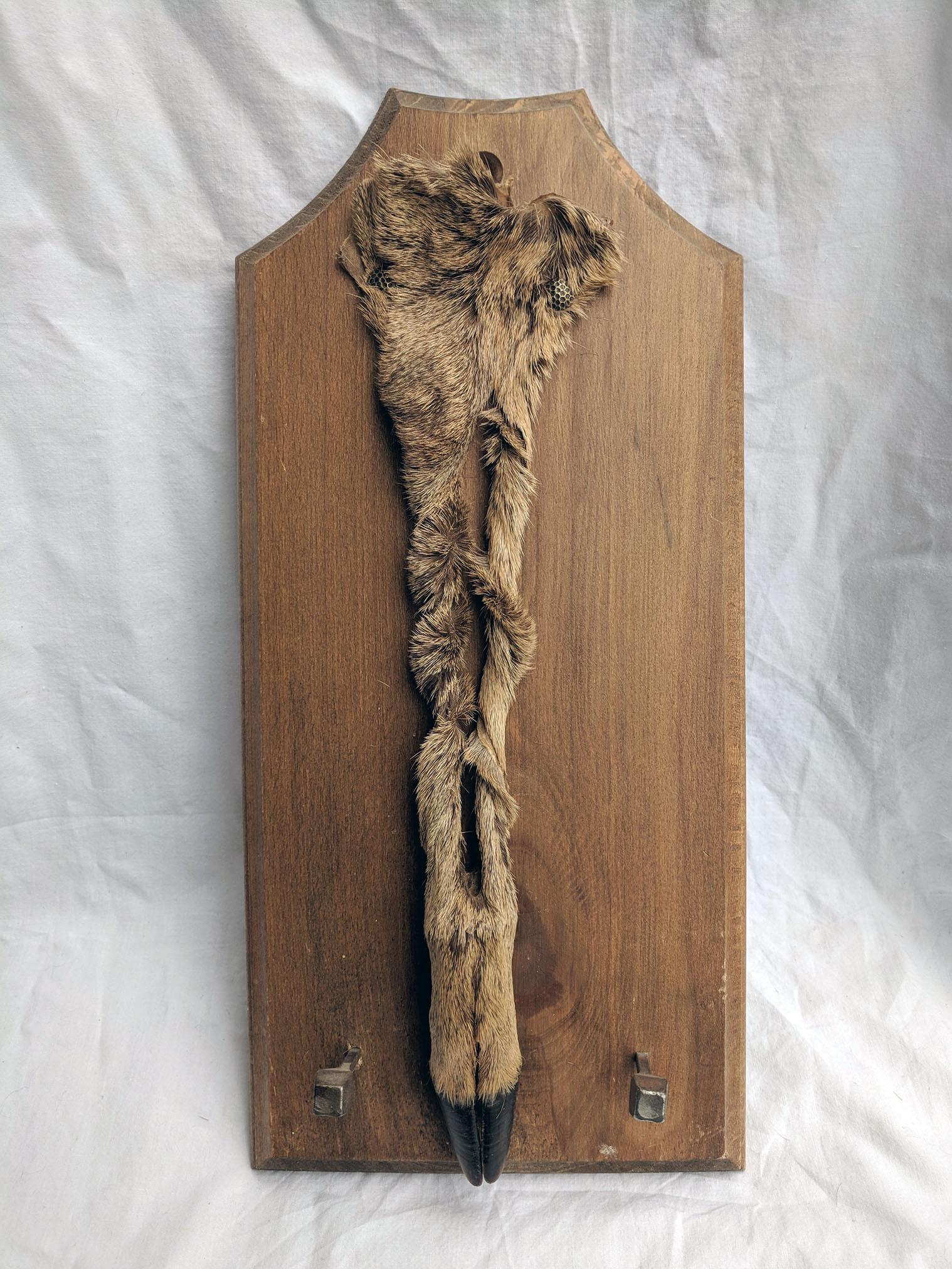 Deer hoof plaque (2).jpg