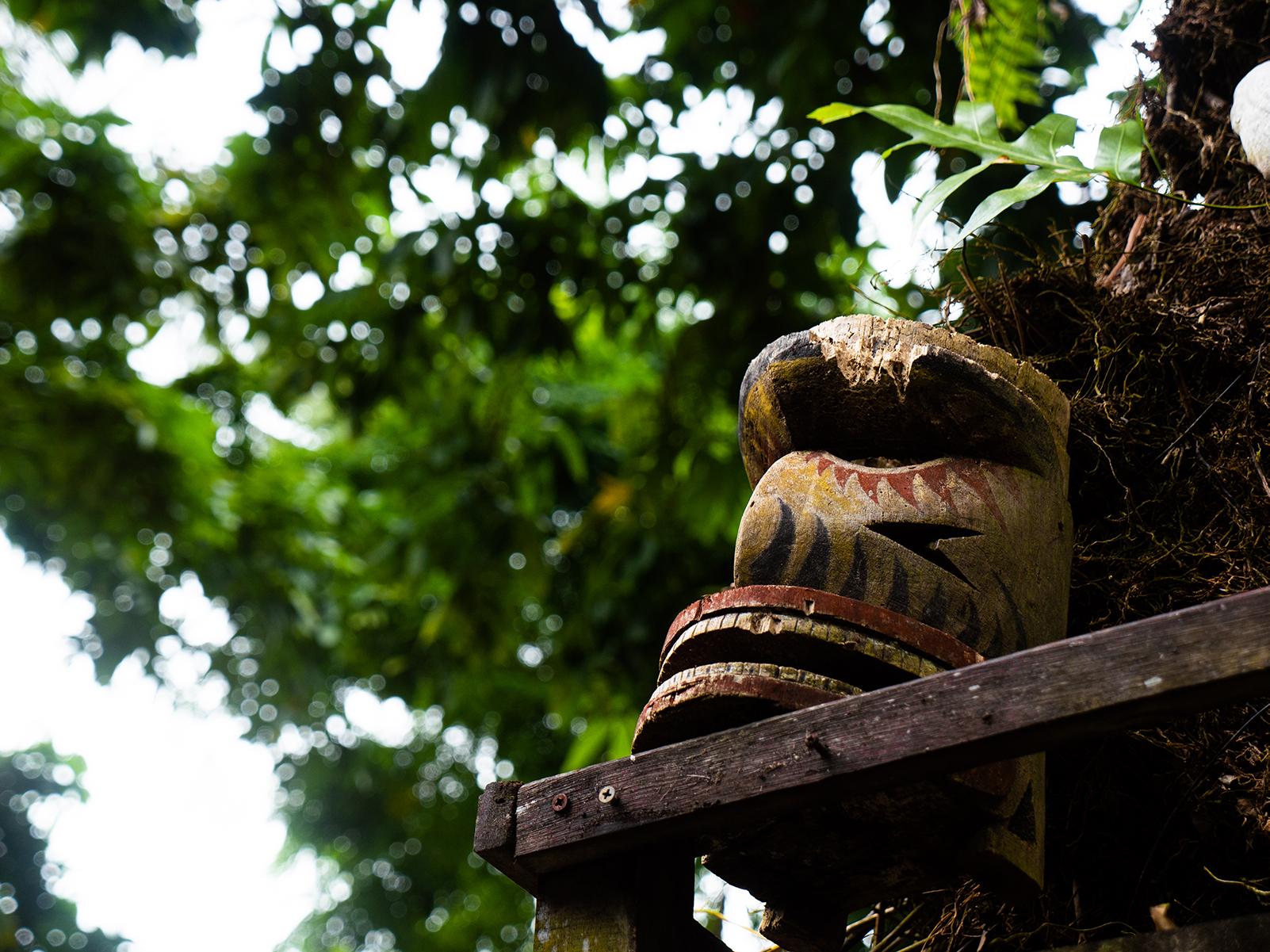 No two the same - Papua New Guinea has more than 800 distinct language groups.
