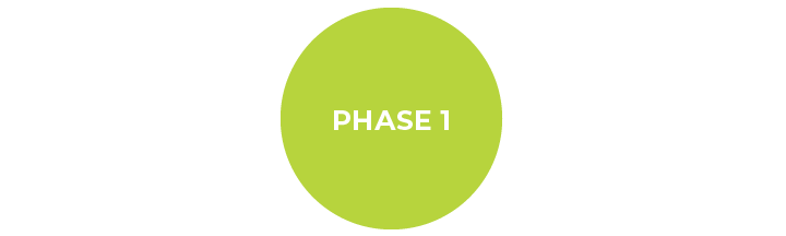 Phase1-01.png