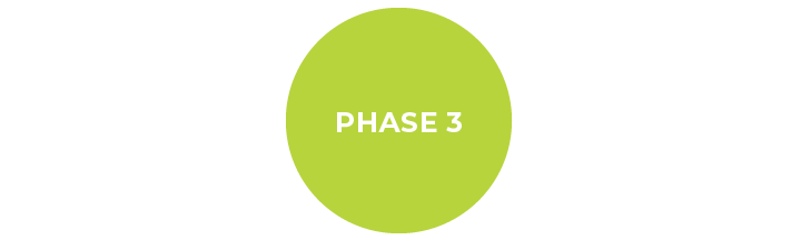 Phase3-01.png