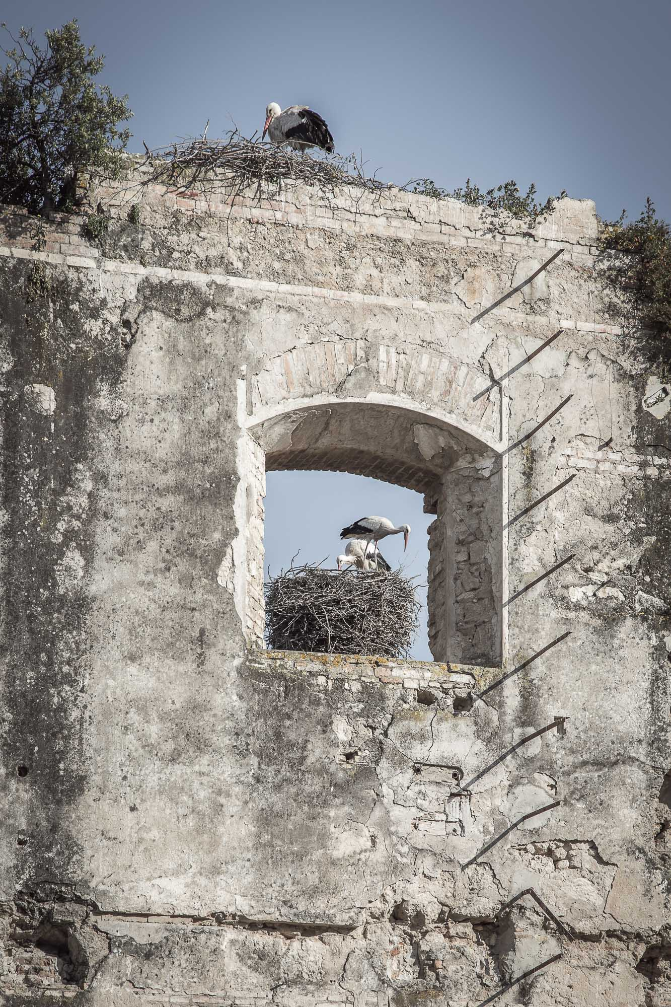 Arquitectura El Portal - Estudio GALLARDO Fotografía