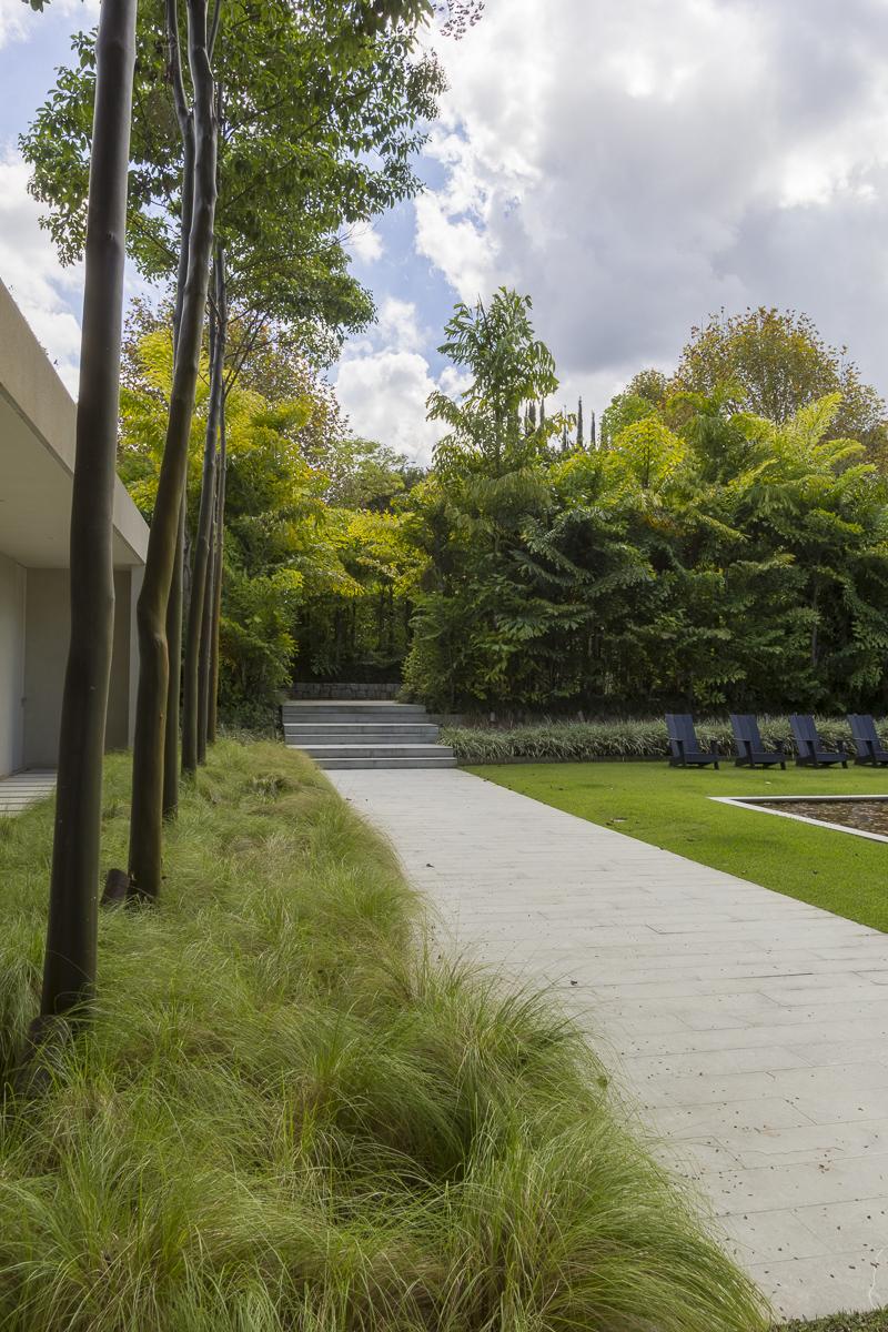 064_Residencia VT_CaruPradoFotografia_.jpg