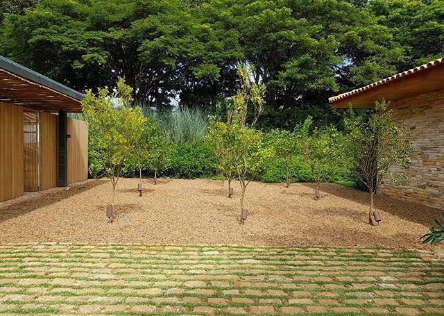 Pátio de cítricos . . . #cenariopaisagismo #paisagismo #arquitetura #landscape #landscapedesign #jardim