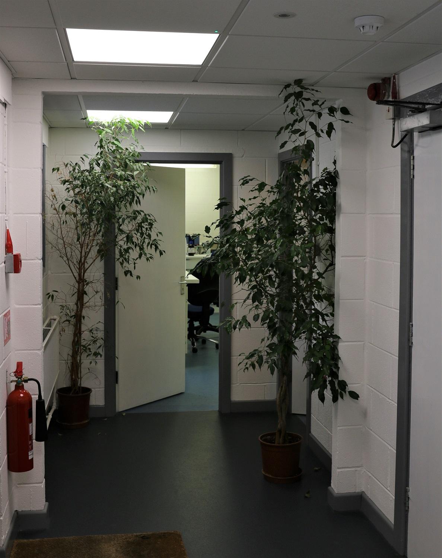 Redecoration and brightening of hallways