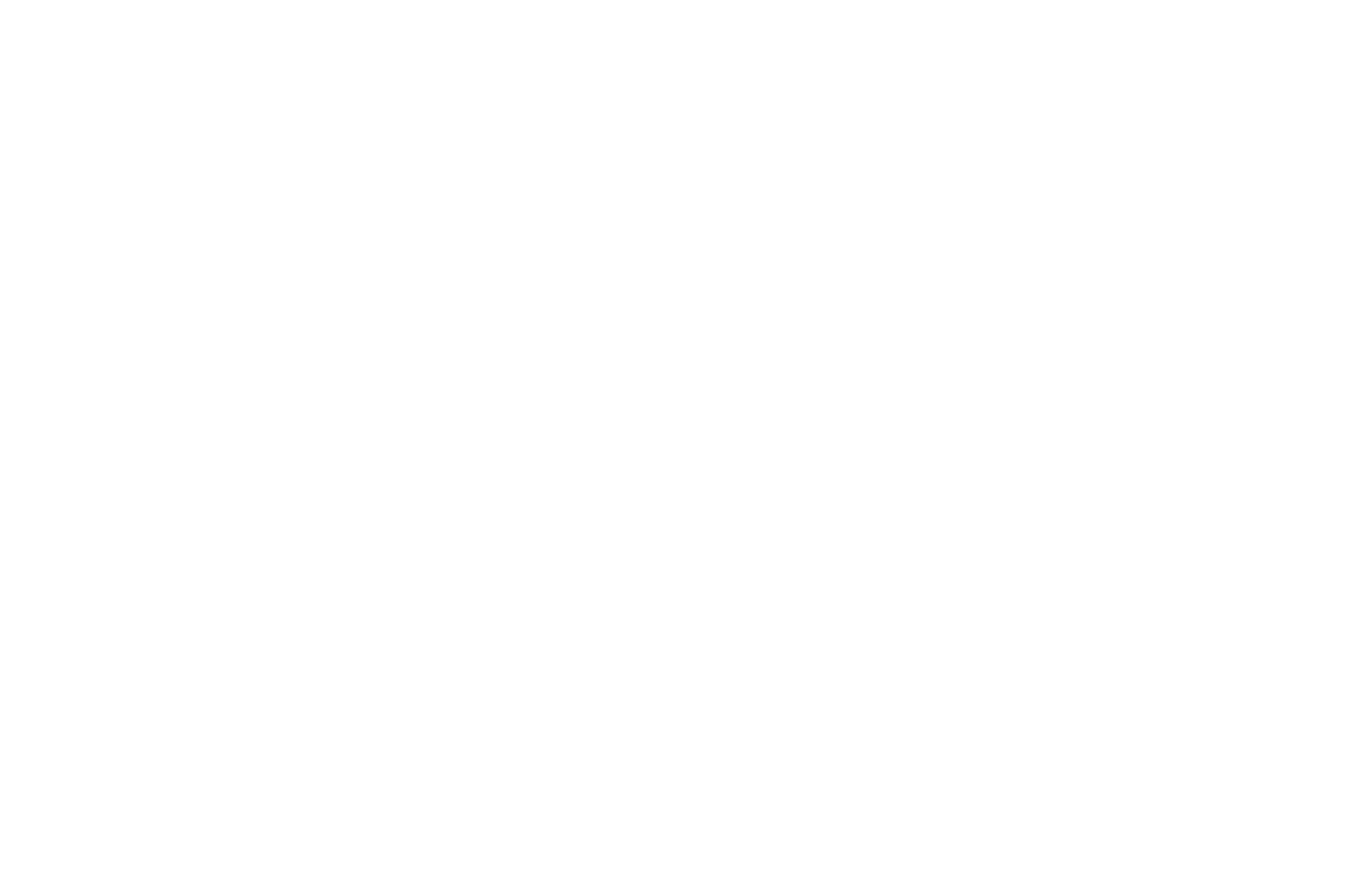 Langston Hughes African American Film Festival - 2018.png