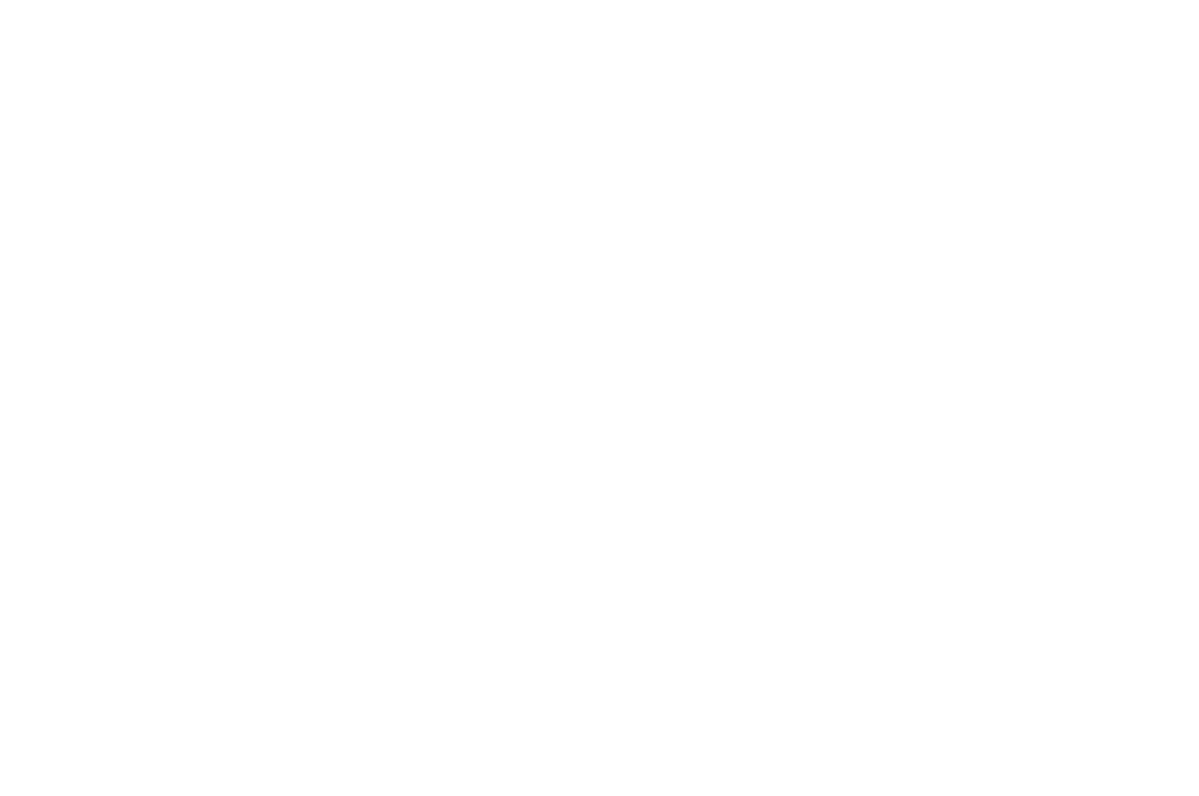 Black Muslim Girl Fly Film Festival - 2018.png