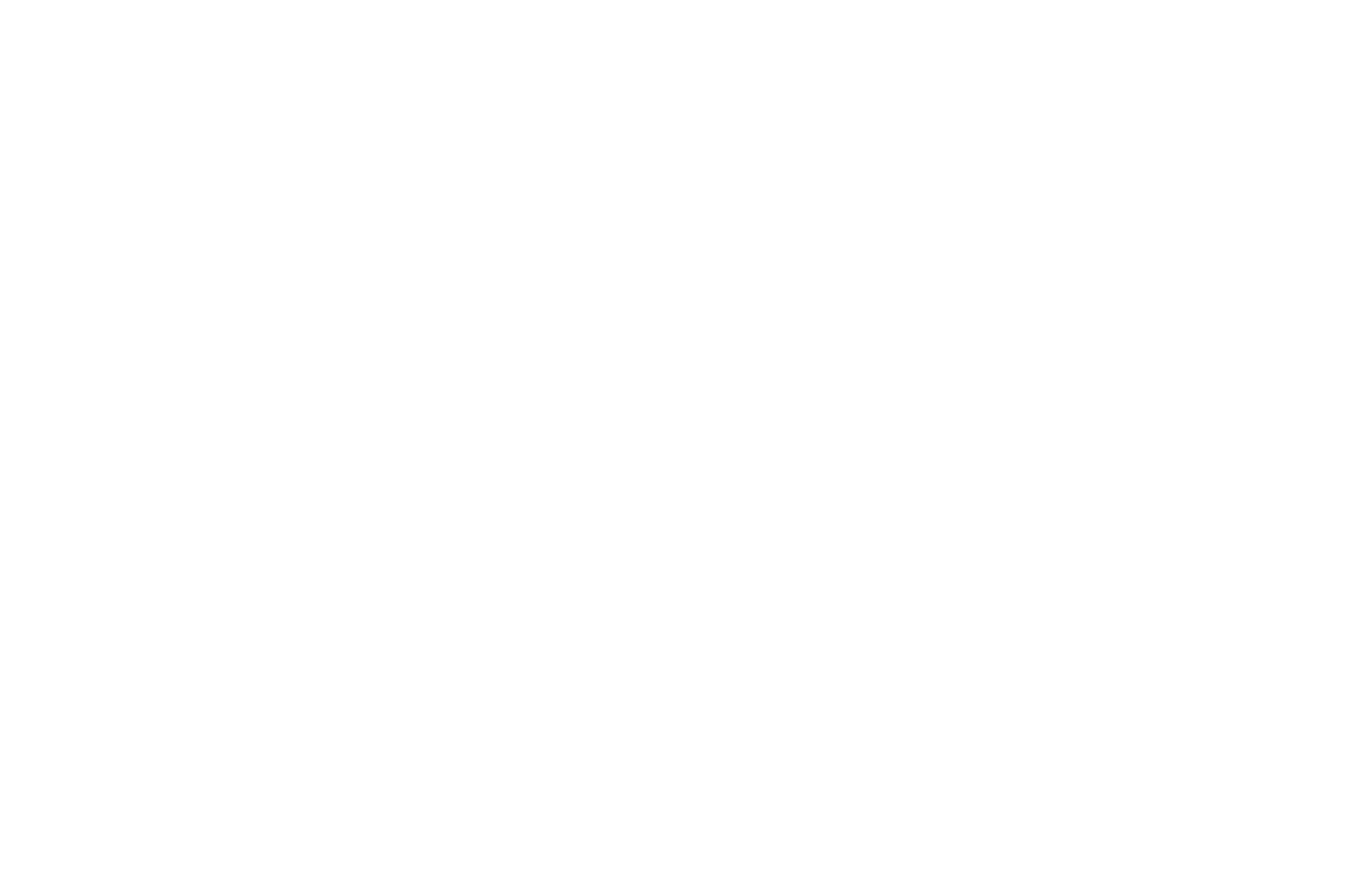 WINNER - BEST FILM - OFFICIAL LATINO FILM FESTIVAL - 2018.png