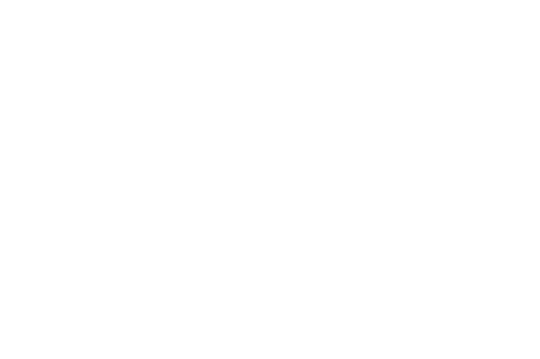OFFICIAL SELECTION - Montclair Film Festival New Visions - 2018.png