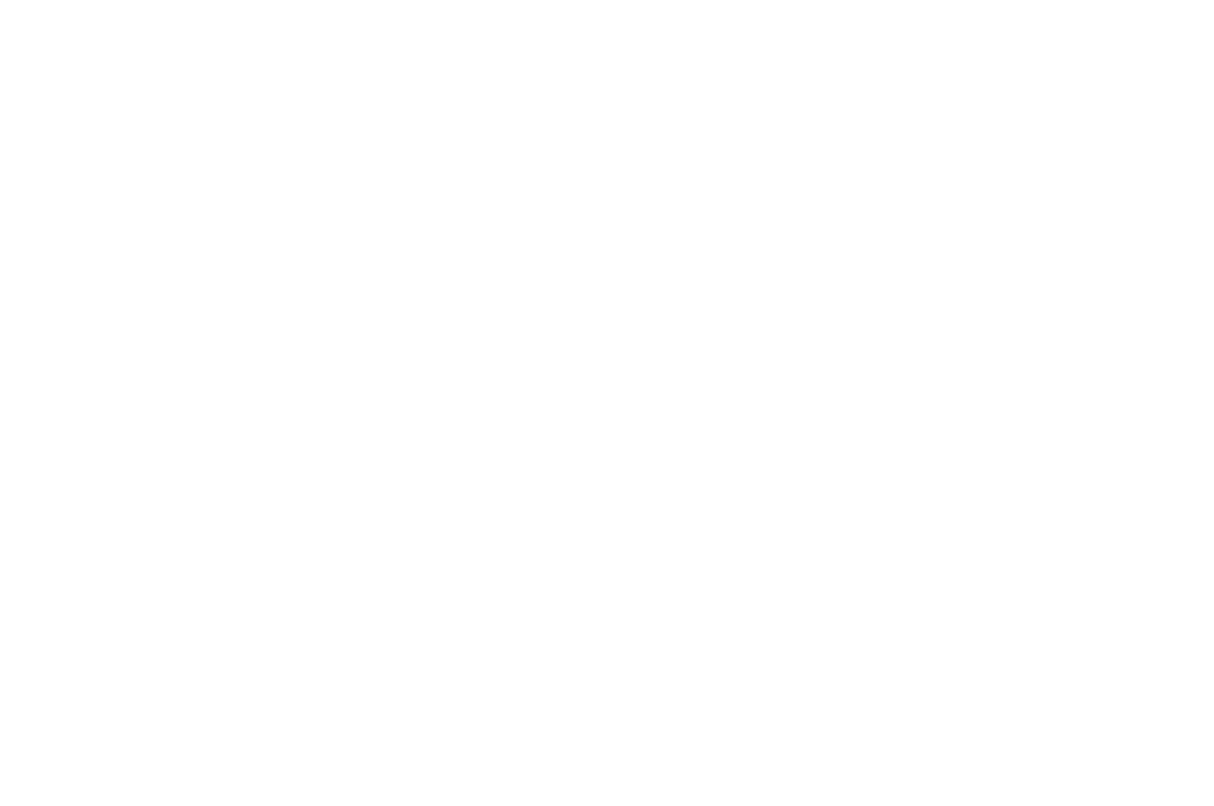OFFICIAL SELECTION - Dominican Film Festival - 2018.png