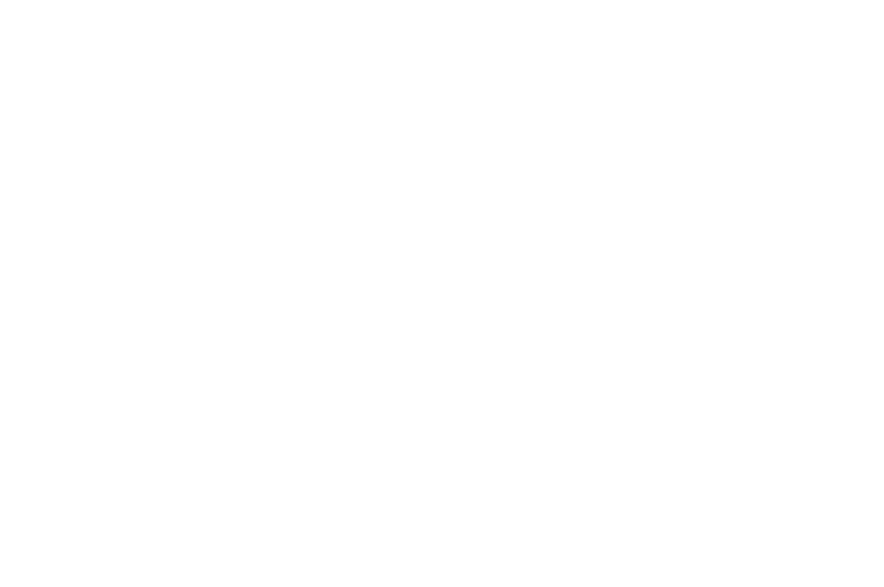 Newark International Film Festival - 2018.png