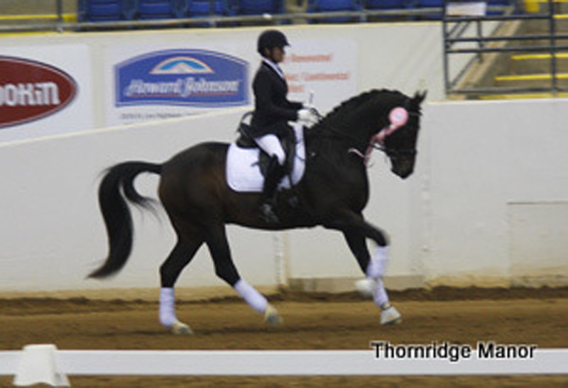 Phoebe & Prince 5th Place at BLM Championships 2012
