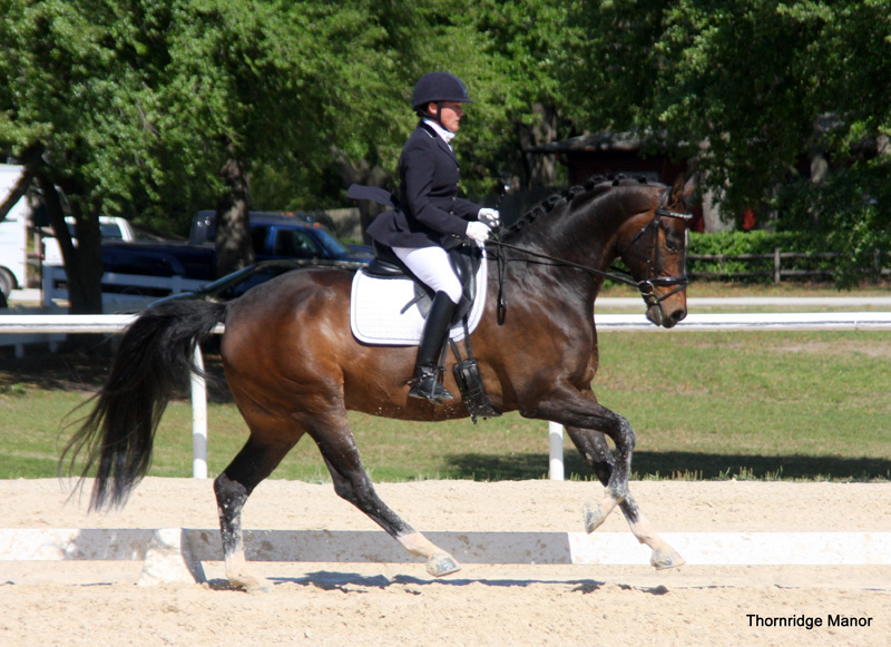 Phoebe & Prince debut 3rd Level 67% - FL 2014