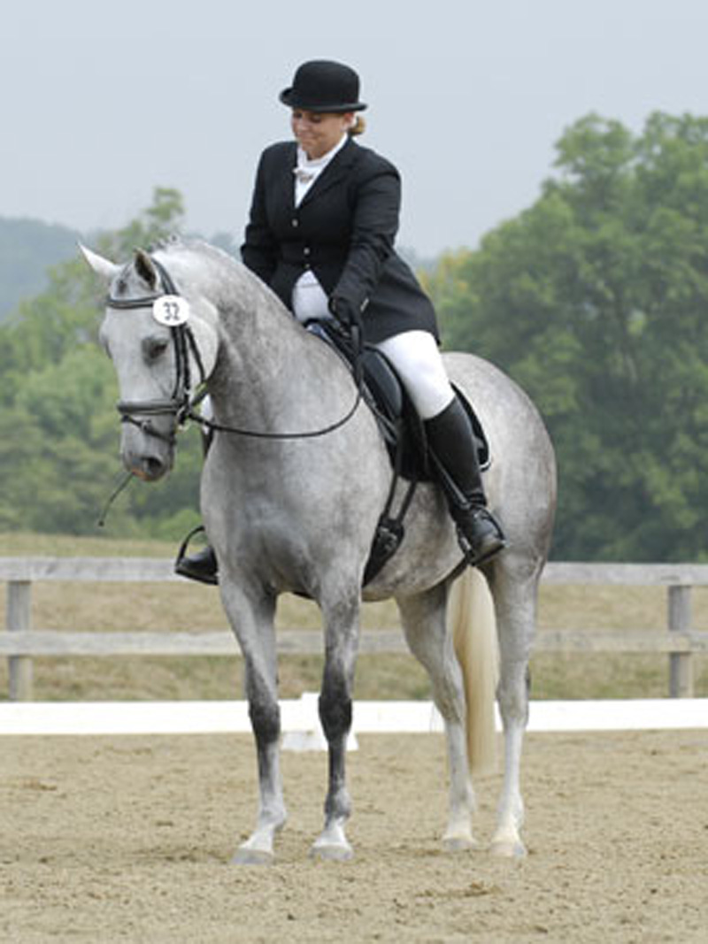 Claudia on her own Dutch Mare, R. Star