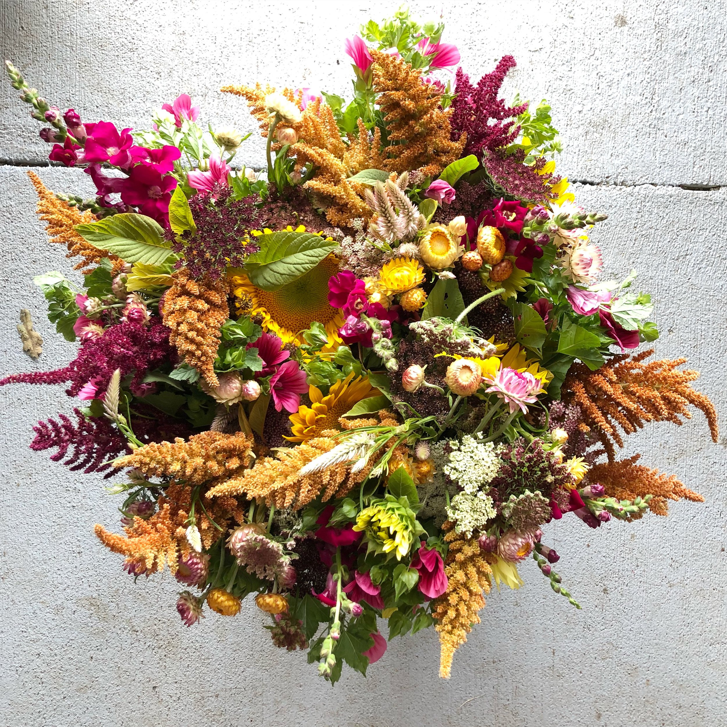 Bouquet Subscriptions - We love sharing the beauty that grows on our farm, and a bouquet subscription is one of the best ways to bring fresh, seasonal blooms into your home or office. We are currently offering spring and summer bouquet subscriptions - Click Here for more information and to purchase.