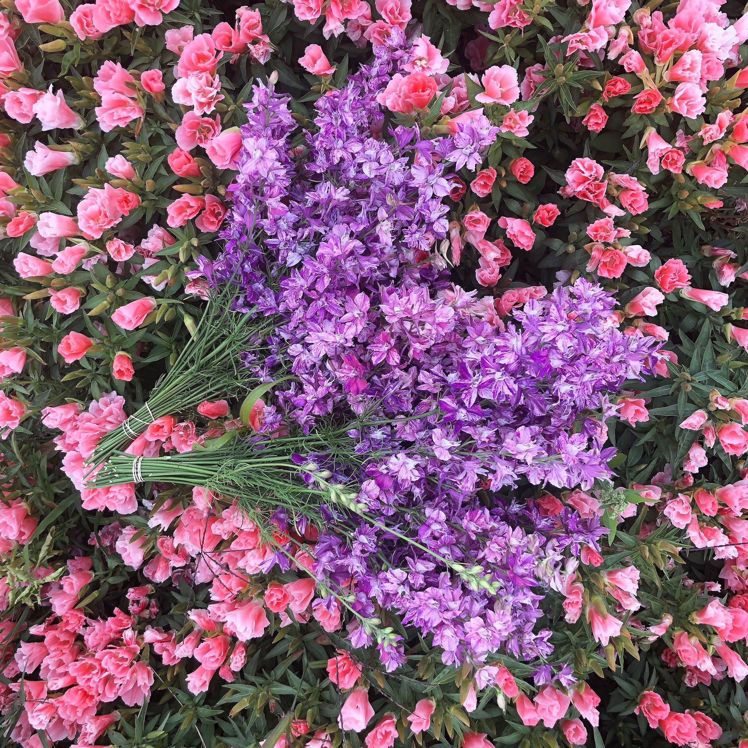 Flower Availability -