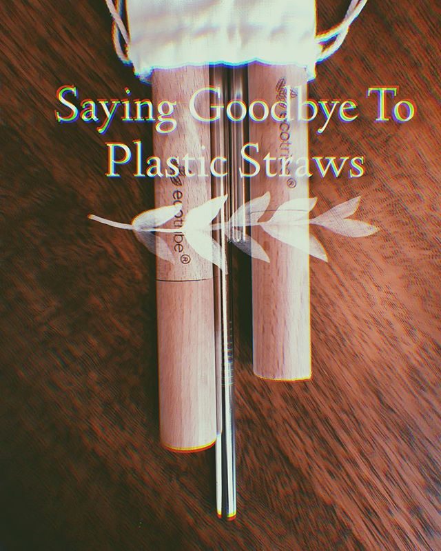 Today on the blog I wrote about my first week of using reusable stainless steel straws! No more plastic straws in my home or at restaurants. • Did you know as America's we use 500 MILLION plastic straws a day? And it take about 500 years for just one straw to decompose? • It's a small lifestyle change anyone can make, give it a try! Link in the bio. • • #upcycling #upcycle #thrifters #thriftstorefinds #thrifting #embroidery #fblogger #thrifted #diy #craftblogger #embroideryart #upcycledclothing #fashiononabudget  #sustainablefashion #thriftblogger #creativityfound #diyblogger #clevelandblogger #secondhand #secondhandfirst #recycledfashion #thatsdarling #mybeautifulmess #sustainableliving #sustainability #sustainable #ecotribe #ecofriendly #savetheseaturtles
