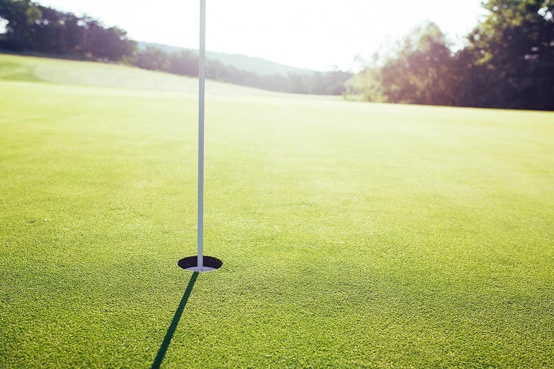 McLemore_Resort_LookoutMountain_Golf_Course_Hole_Close_Up.jpg