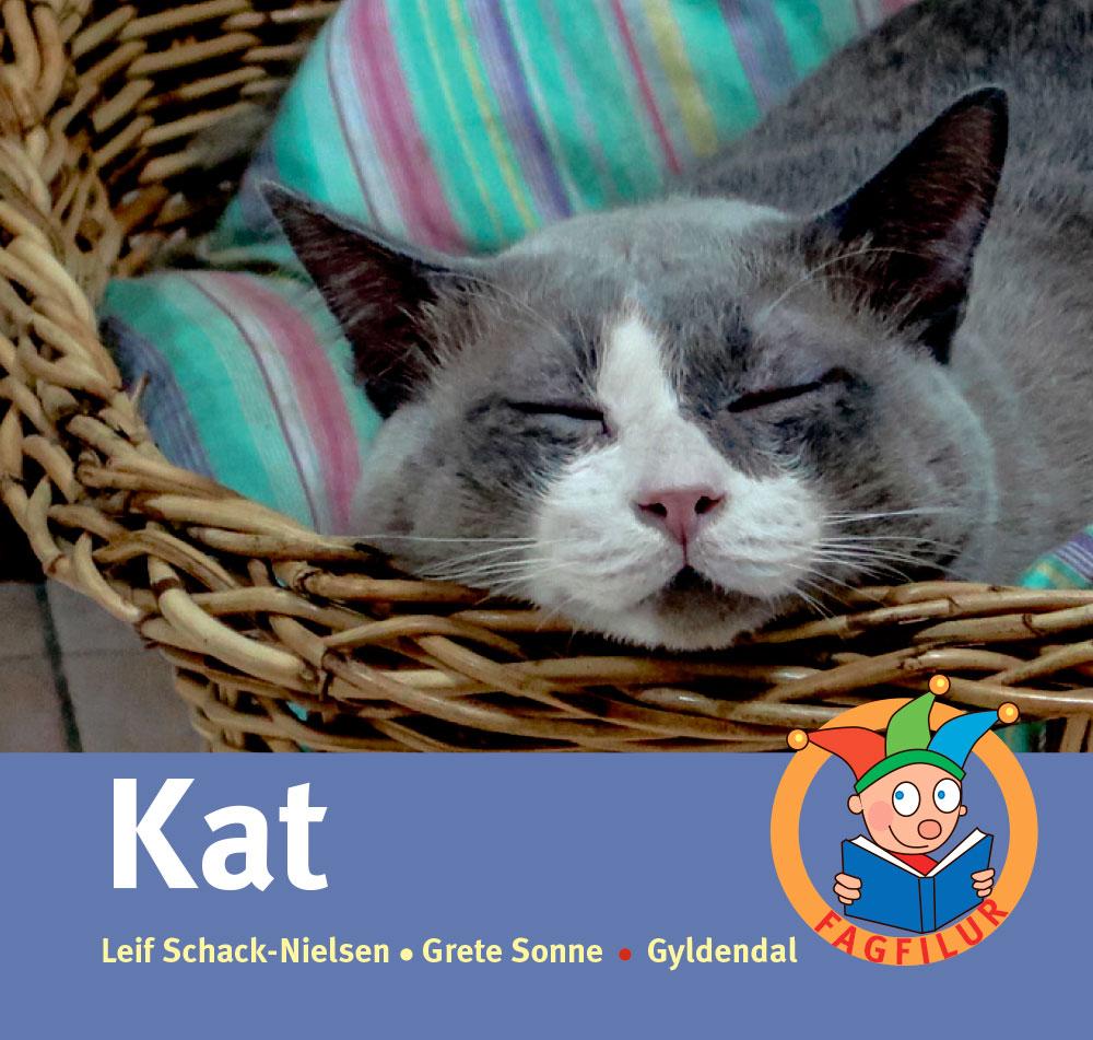 Kat.jpg