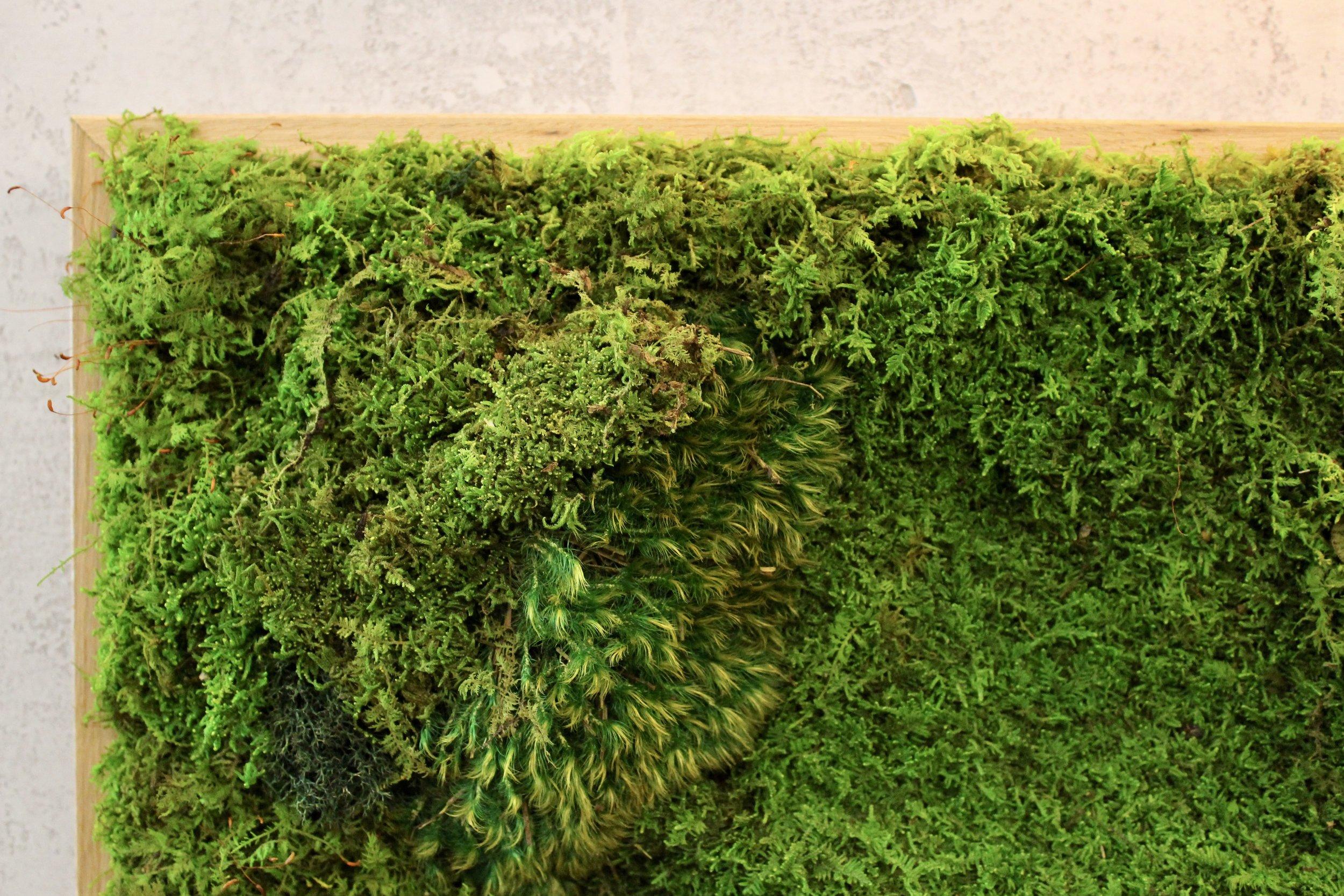 Custom Moss Panel Design