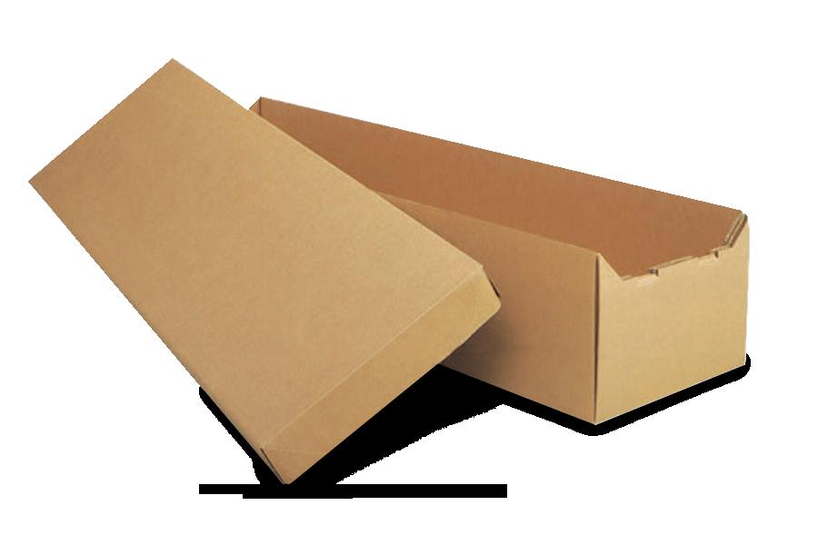 CM_CsktsCR_Cardboard.png