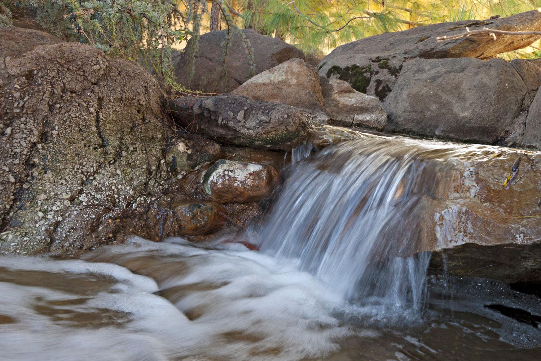Cascade Garden Stream