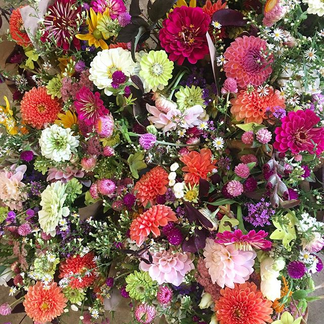 Yesterday's 💐 ready to roll out. Please note: if you are a bouquet punchcard holder or a lover of local blooms, we wanted to share that next week and the week after we plan to have flowers... after that we move into what I call 'borrowed time'. We might have them into October 🤞...might not?! Anyway, enjoy them while they're here, their days are numbered.