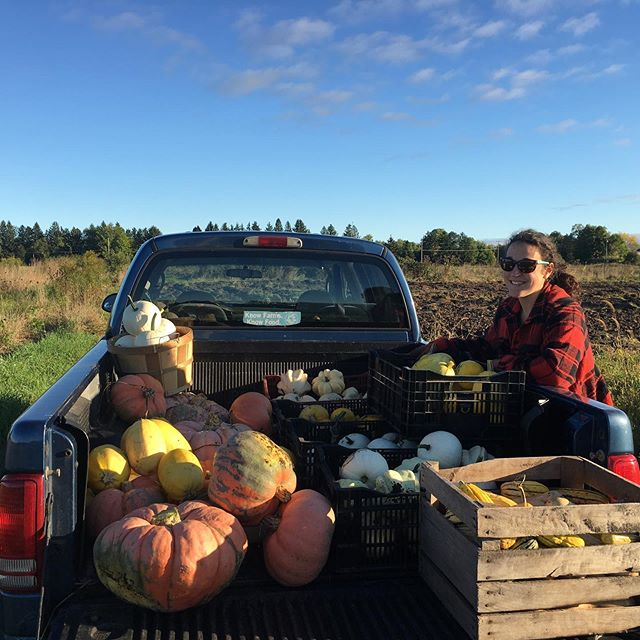 J's plaid coat, gathering the last of the pumpkins and squash from the field and this chilly morning; gave me all the 'fall feels'. #womenwhofarm #frostiscoming