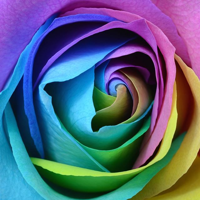 All we want is love. #selflove #motherlove #fatherlove #friendshiplove #loverlove #love
