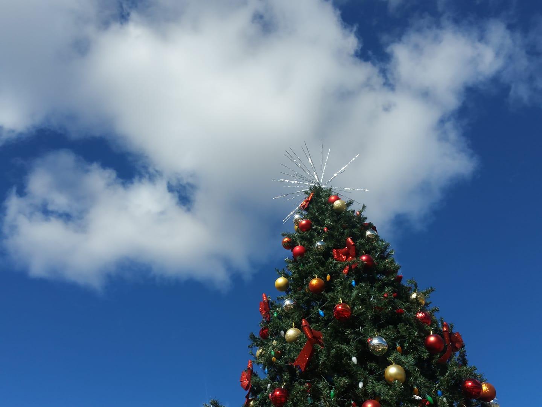 2018 Christmas Tree_Char.jpg