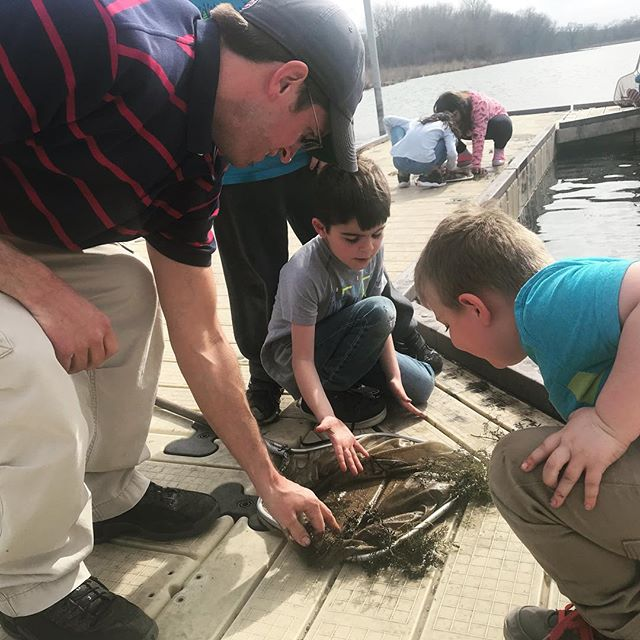 Mr. Robbie and after-school program participants had the chance to get up close and personal with some marsh critters at @nahantmarsh in the final weeks of our after school program! . . . . . . #springforwardqc #afterschool #afterschoolalliance #tagtheqc #quadcities #rimsd41 #rimsd #wetlands #exploremore #getoutside #qca #rockisland #davenport #nahantmarsh