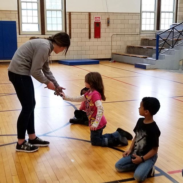 After school program kids at Frances Willard got to meet a snake when Jenna from @nahantmarsh came to visit!