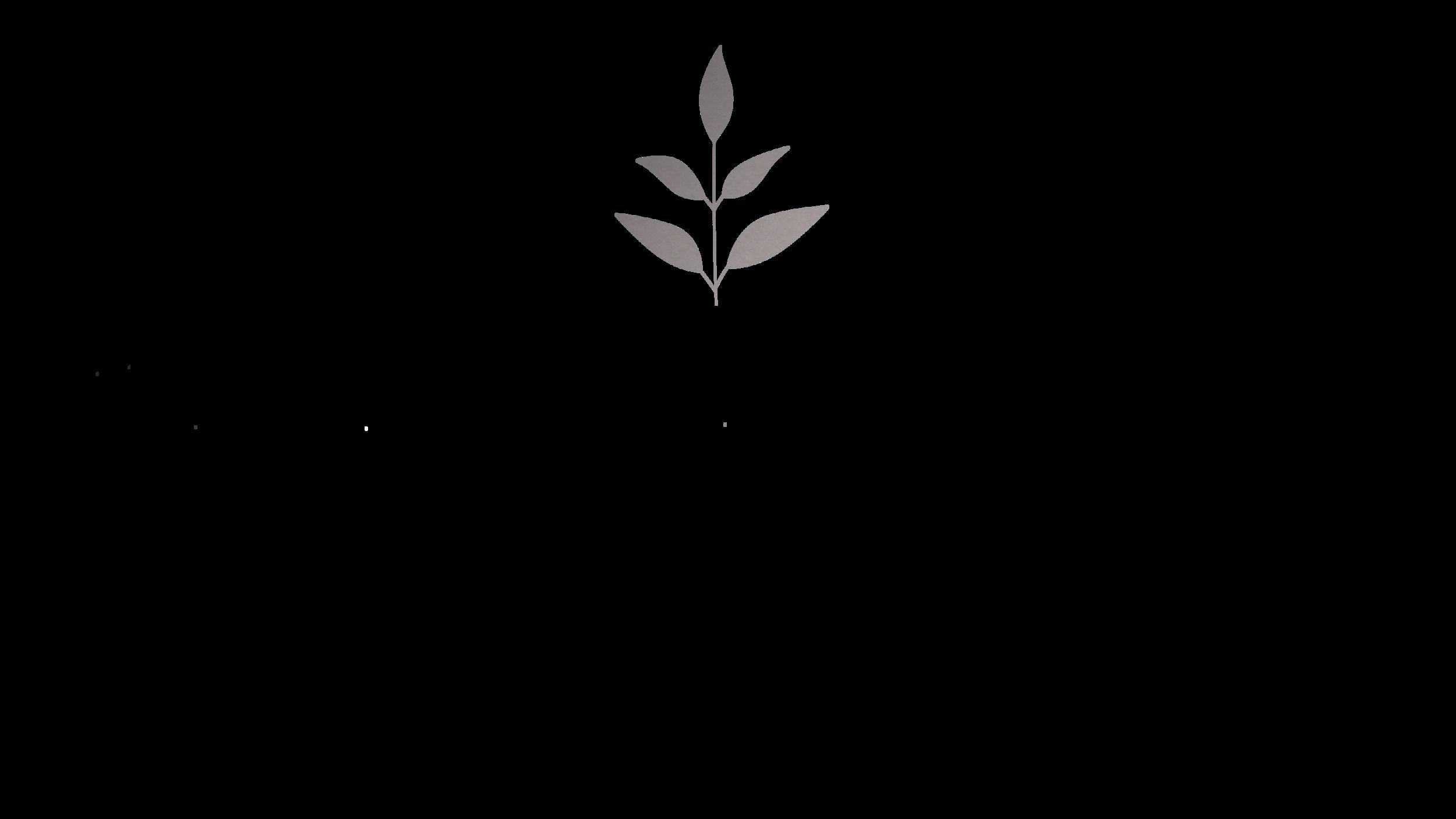 lk_logo_18.png
