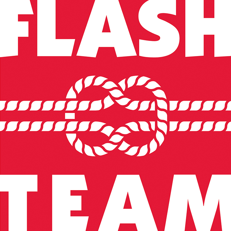 logos_0003_Flashteam.jpg