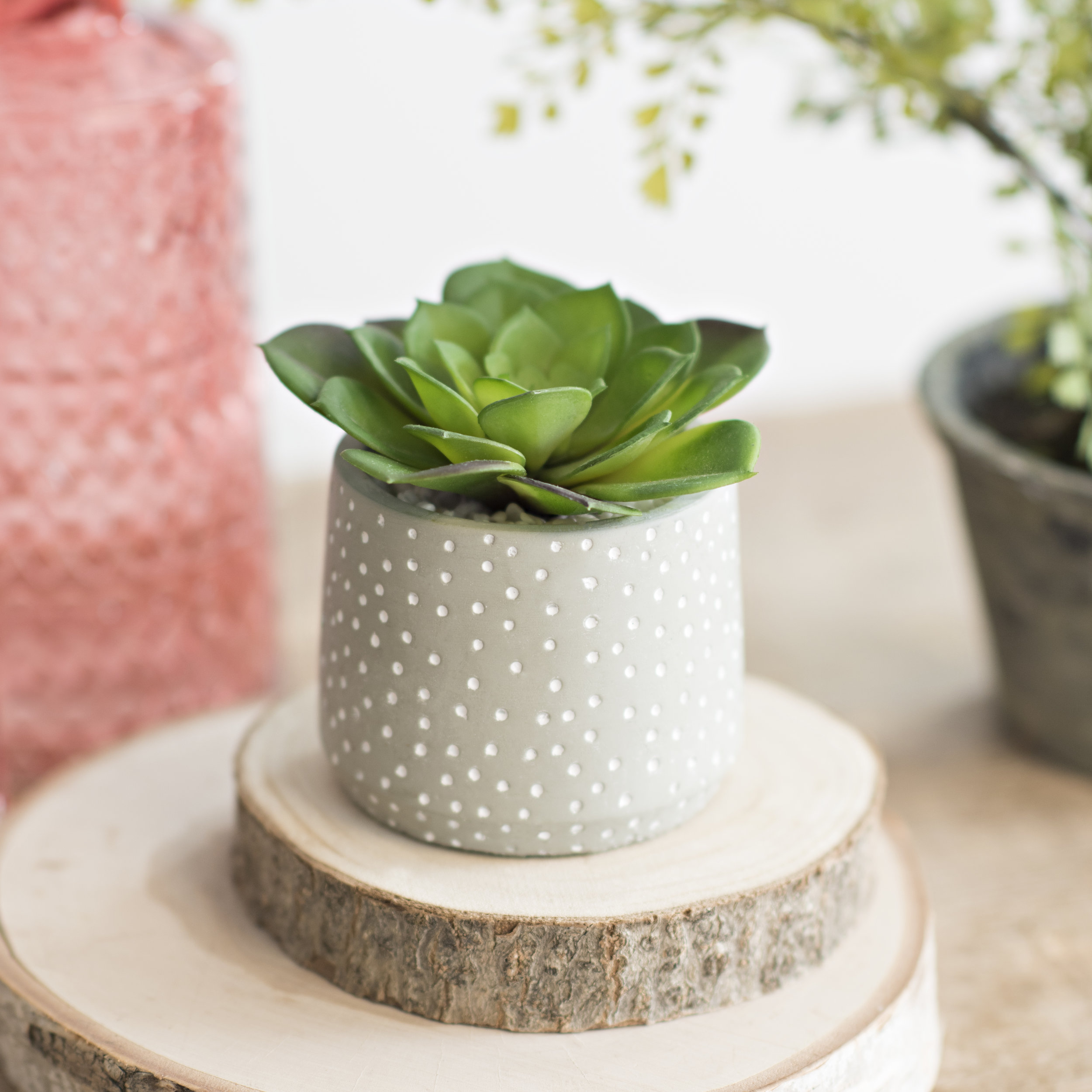 """""""I can't get enough of these! The ceramic pots are so cute, and the succulents look soooooooo real! The best part, I don't have to worry about watering them!"""""""