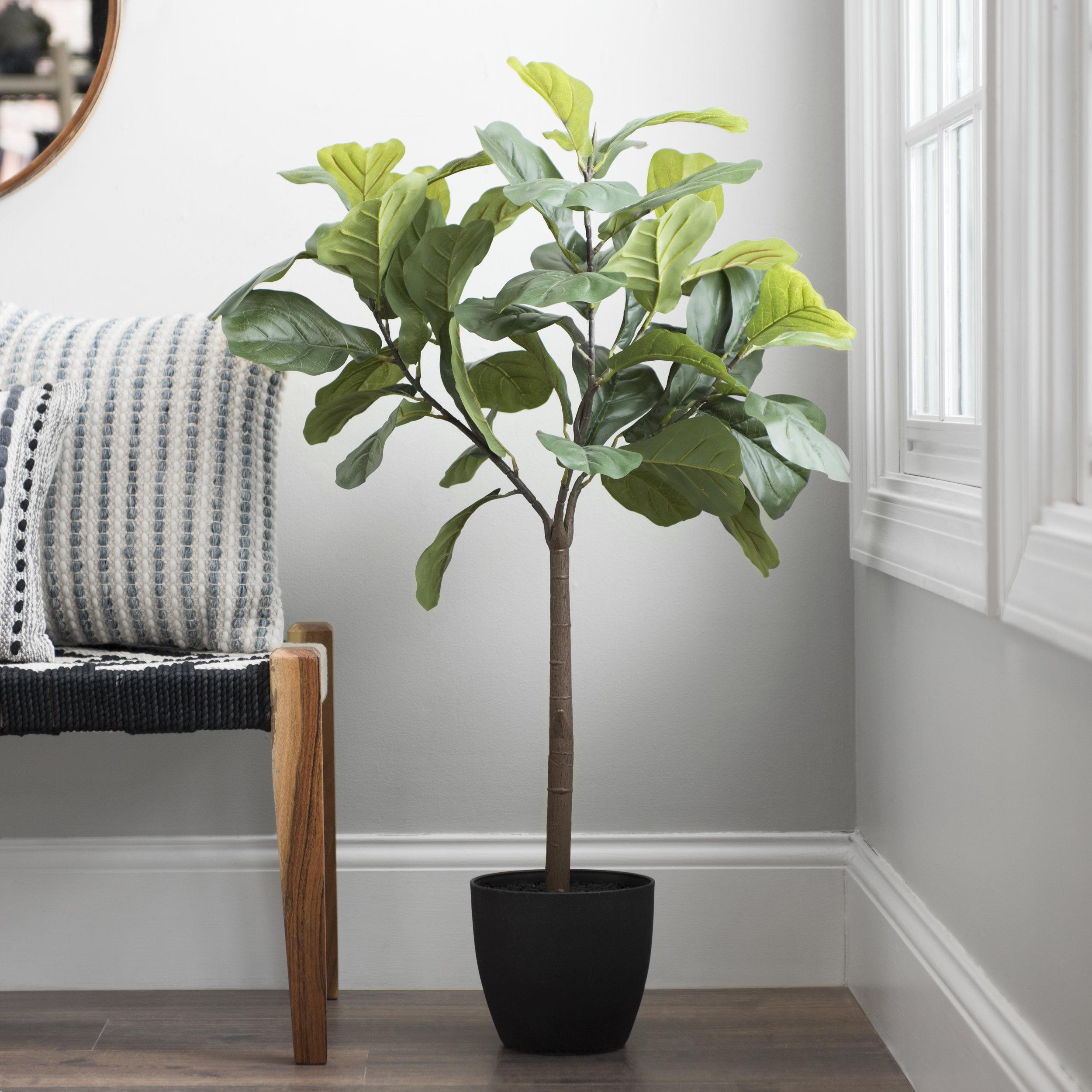 Kirkland's - Fiddle Leaf Fig Tree