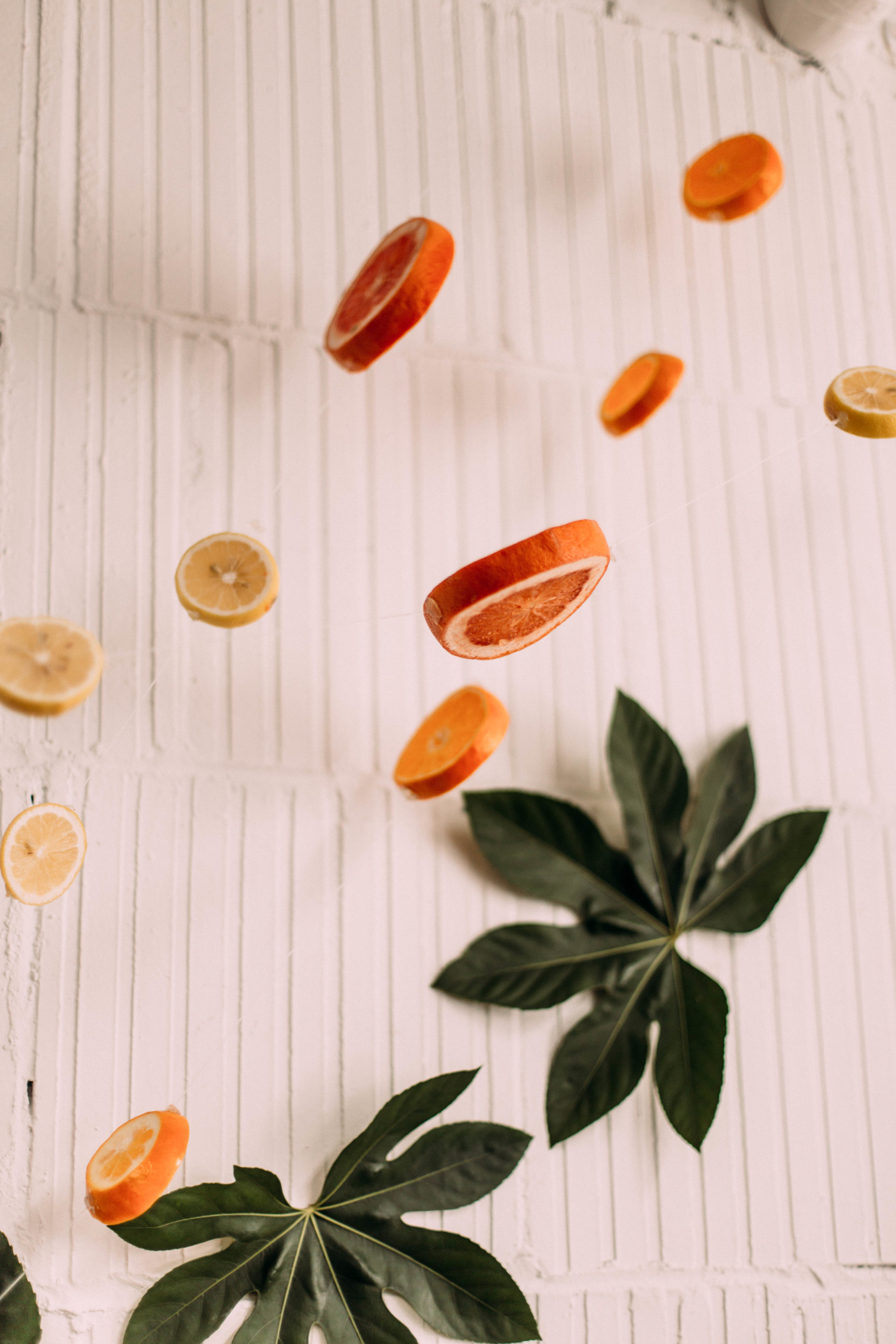 Stringing Citrus Fruits | Style with Ash | Studio Fourteen