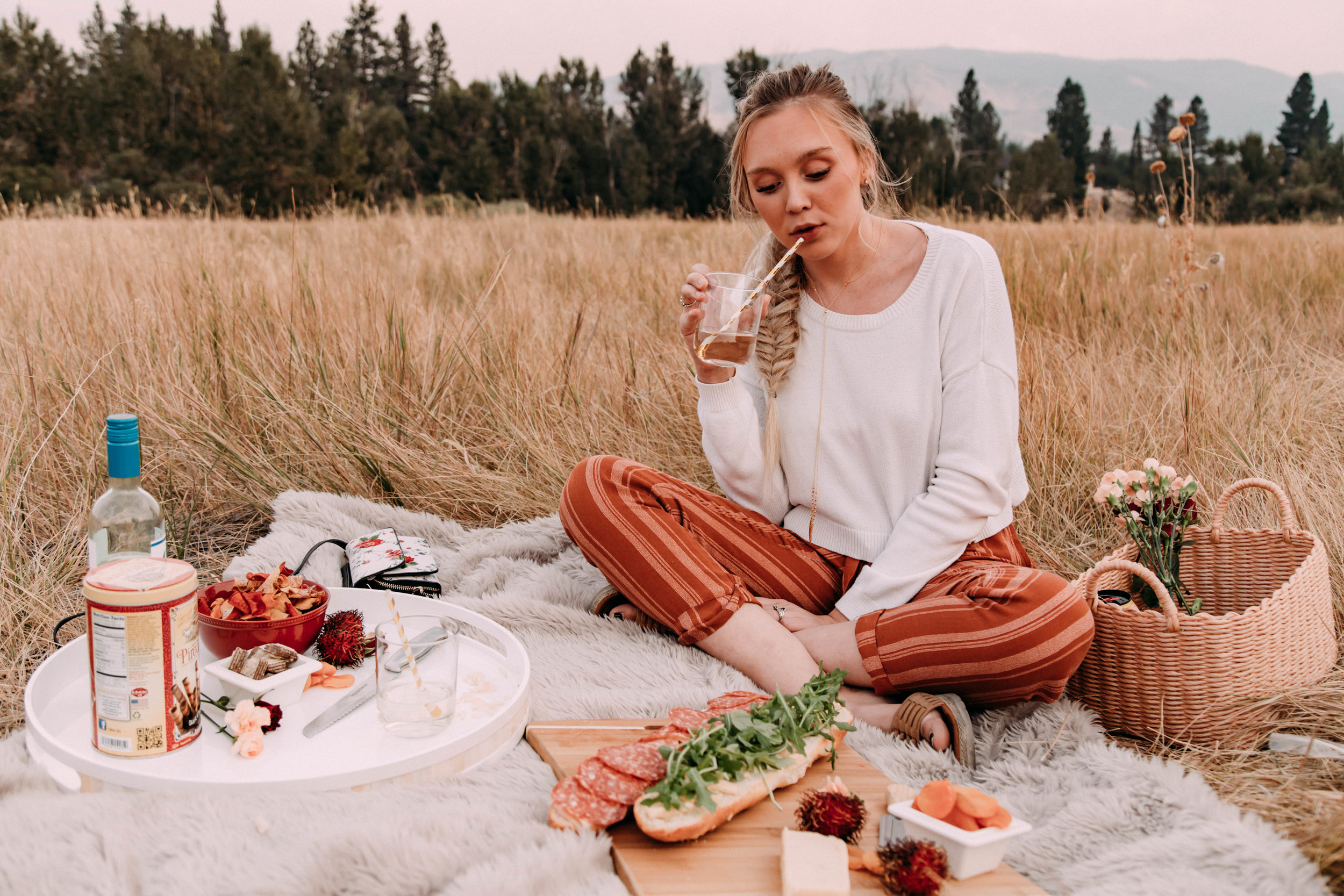 Picnic with the Husband | Style with Ash