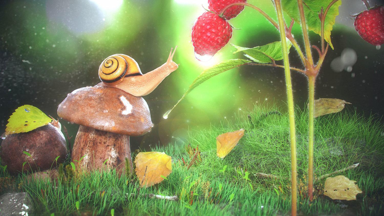 Raspberry+Snail+CA.jpg