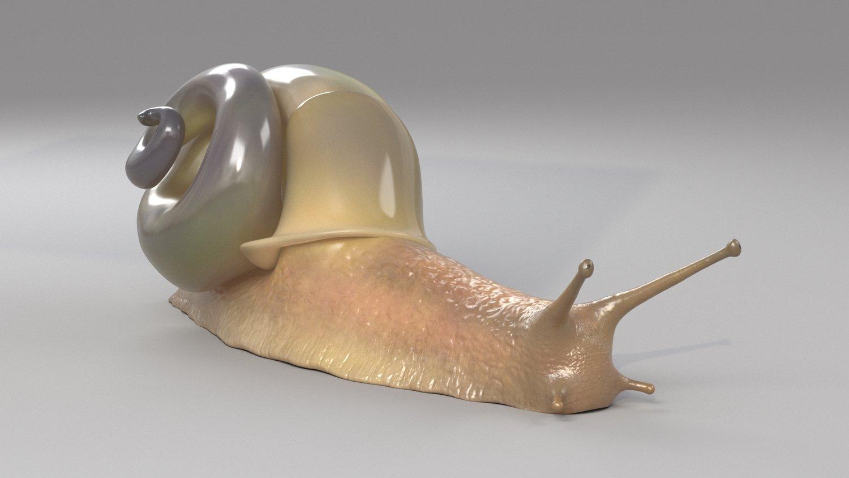 snail02.jpg
