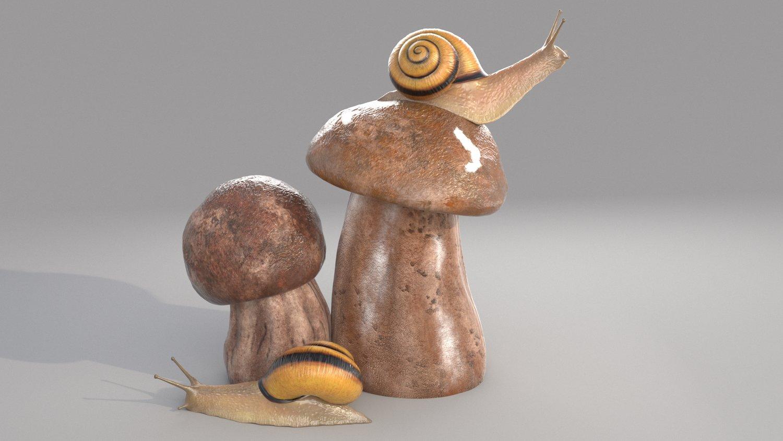 snail03.jpg