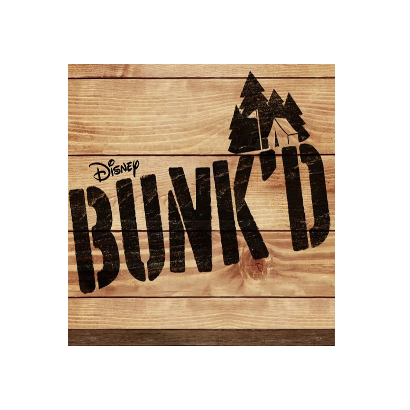 """They say comedy comes from pain. And so it's no wonder that Andrea is one of the funniest people on the planet. She has not only survived an abusive childhood, but found a way to use it in her prose which is so searing and powerful it takes your breath away. -   Pam Eells - EP ""Bunk'd"""