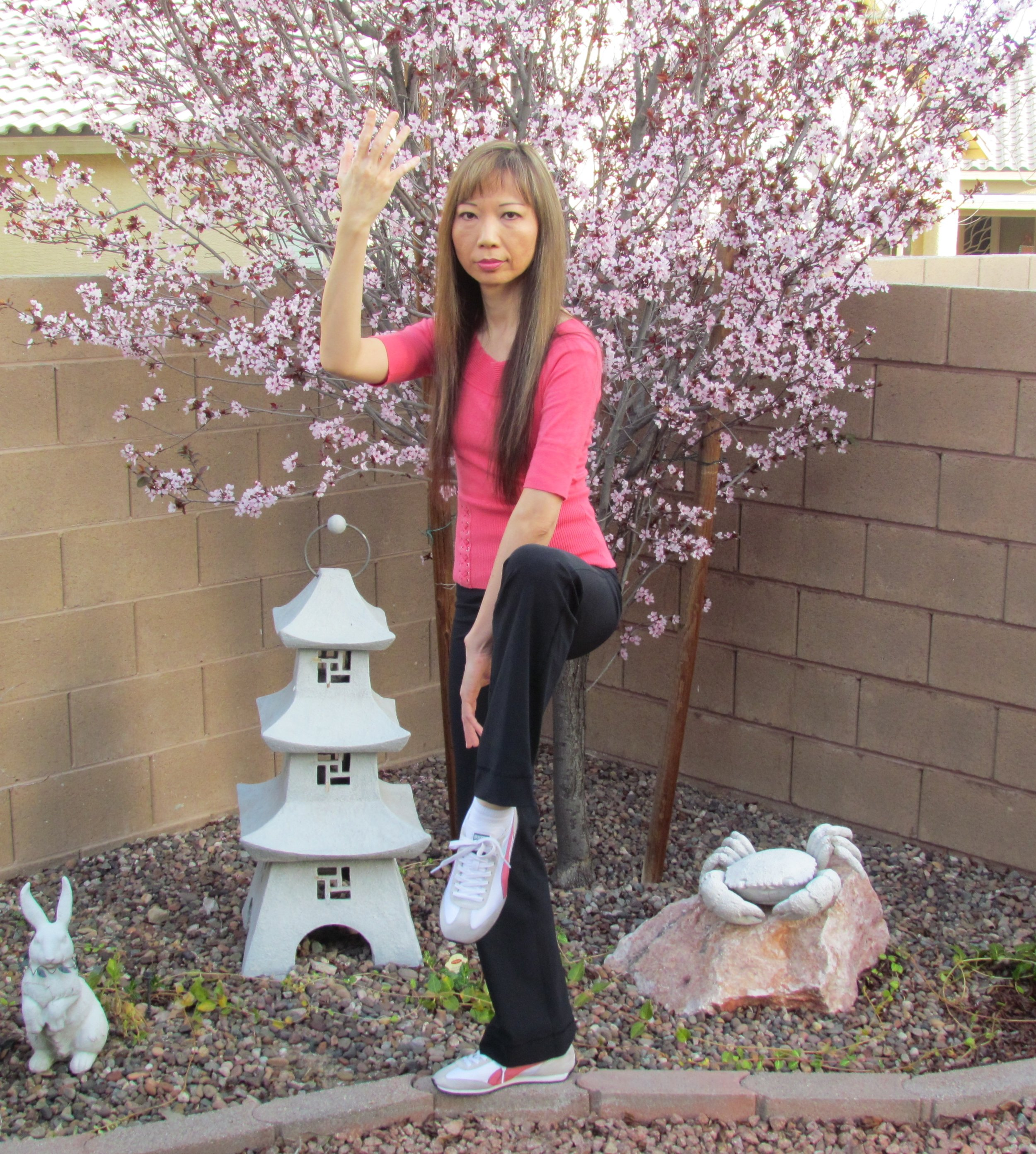 Tai Chi Crane Pose by Andrea Cheng