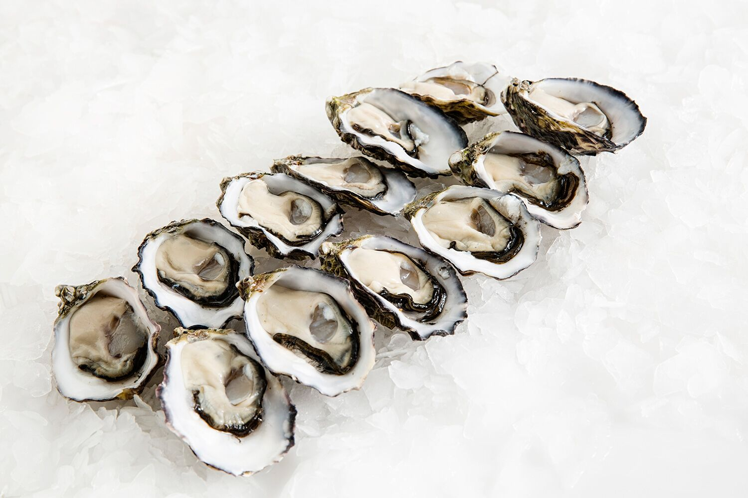 Pacific-Oyster-Large-Woy-Woy-Fishermens-Wharf-Manettas-Seafood-Market.jpg